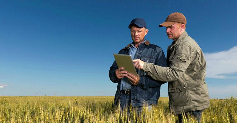 Resultado de imagen para ¿Cómo puede ayudar la 'BIG DATA' al sector agrícola?